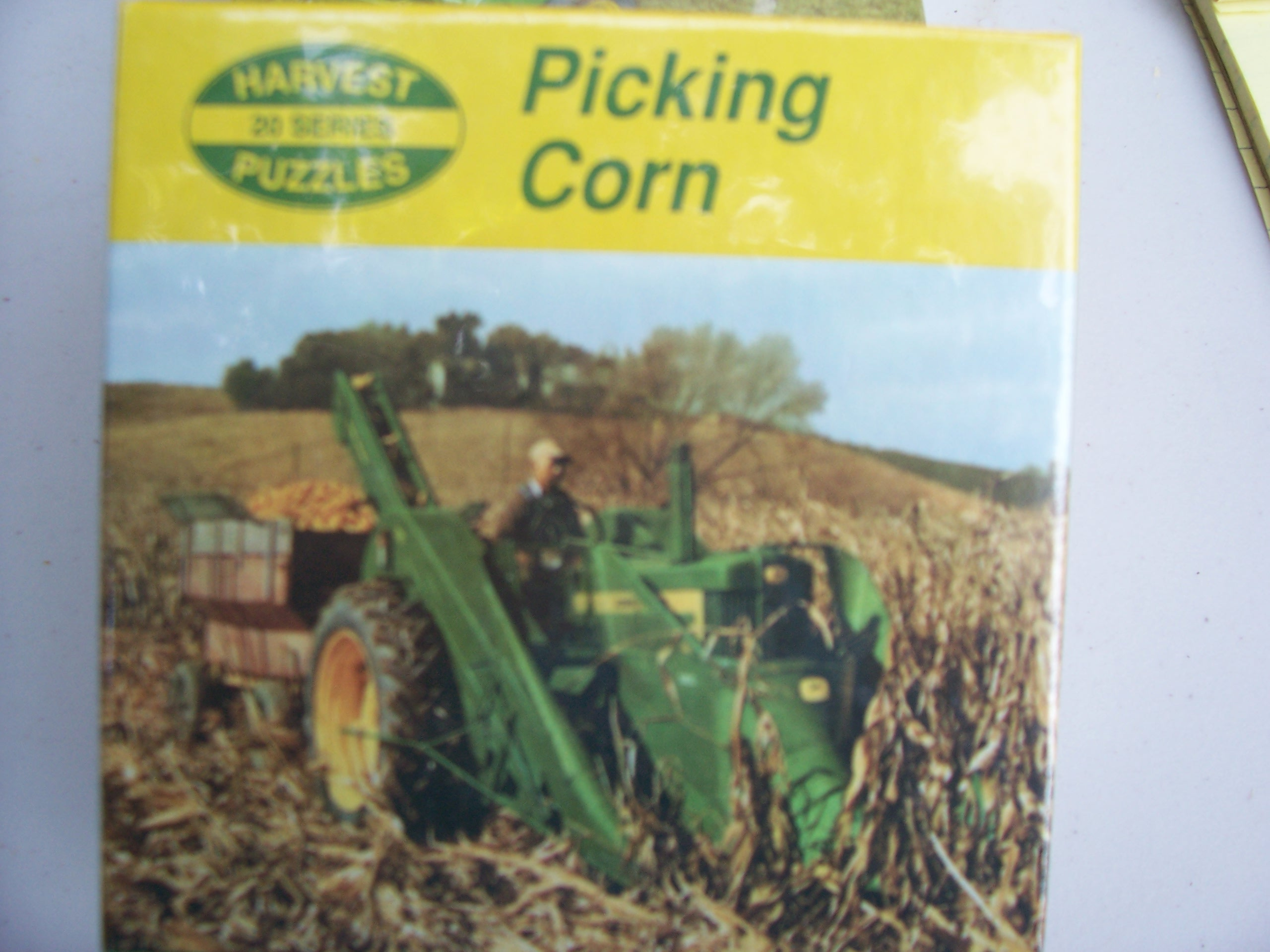 picking corn.JPG