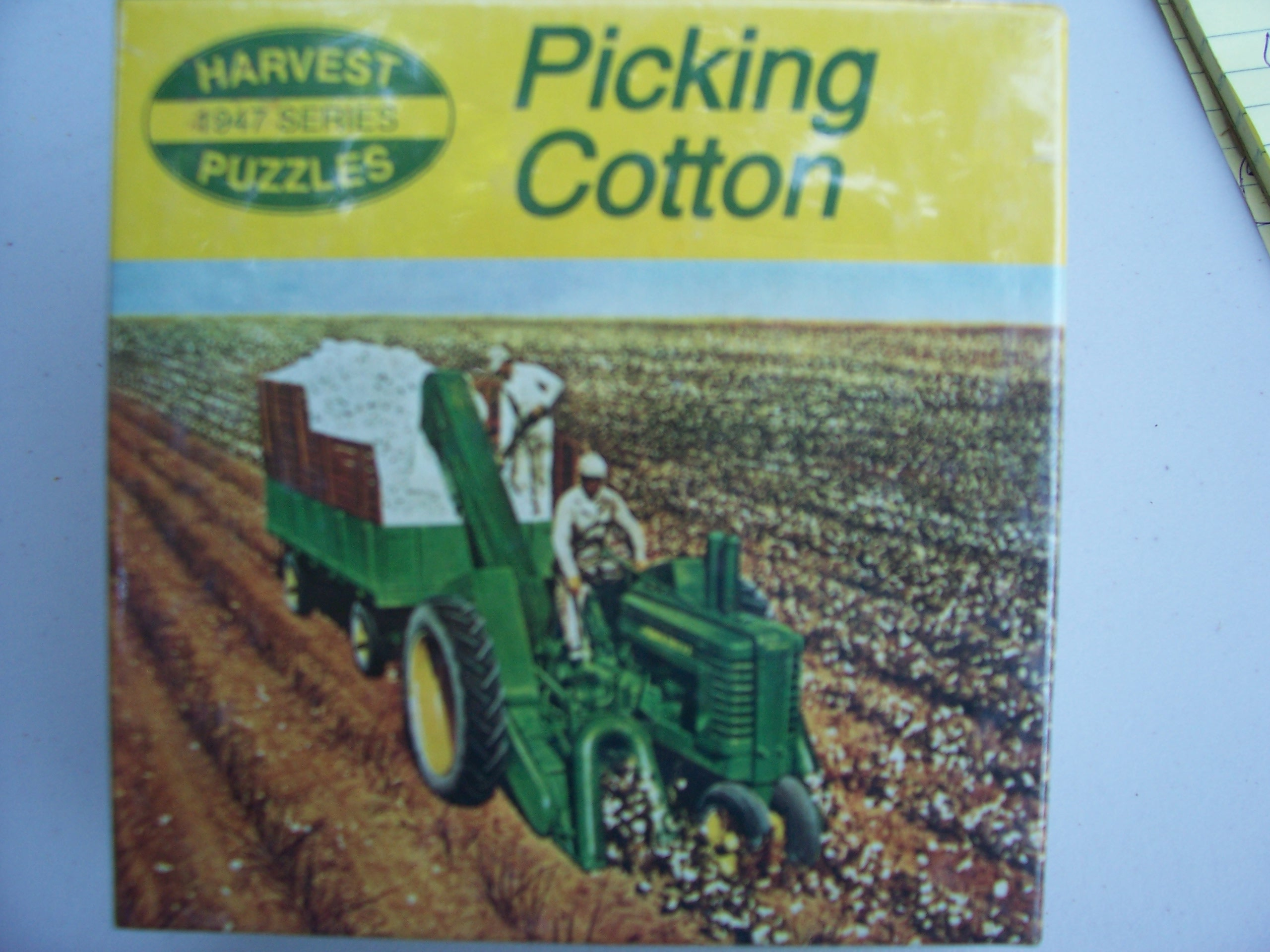 picking cotton.JPG